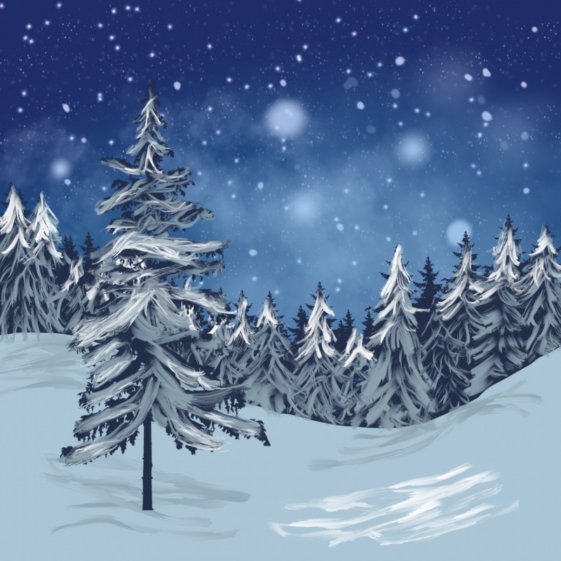 Snowcapped pine trees sitting atop a snowy landscape with a snowy nigh sky